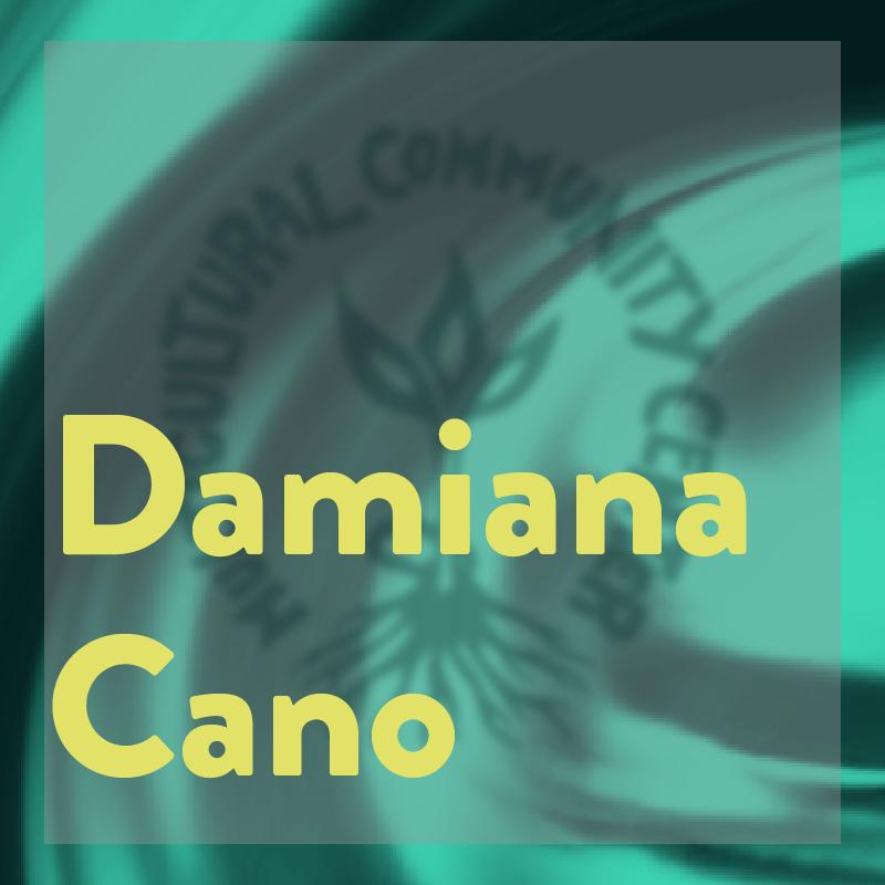 damian, mcc intern